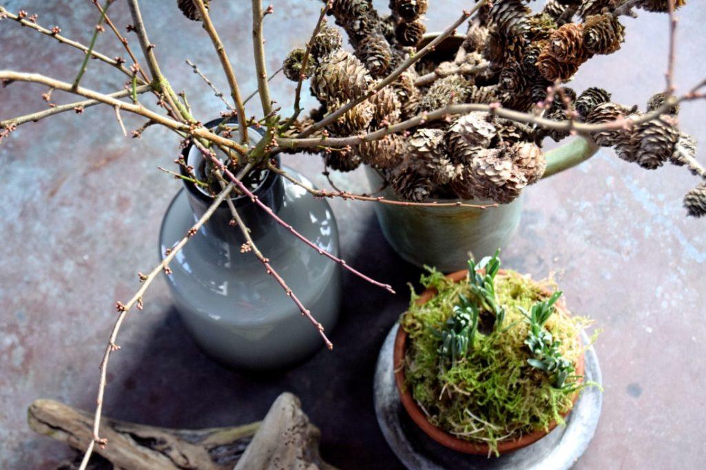 DIY: Indret med grene & forårsfornemmelser